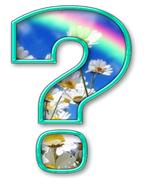 Экологическая игра для первоклассников «Лесная прогулка»