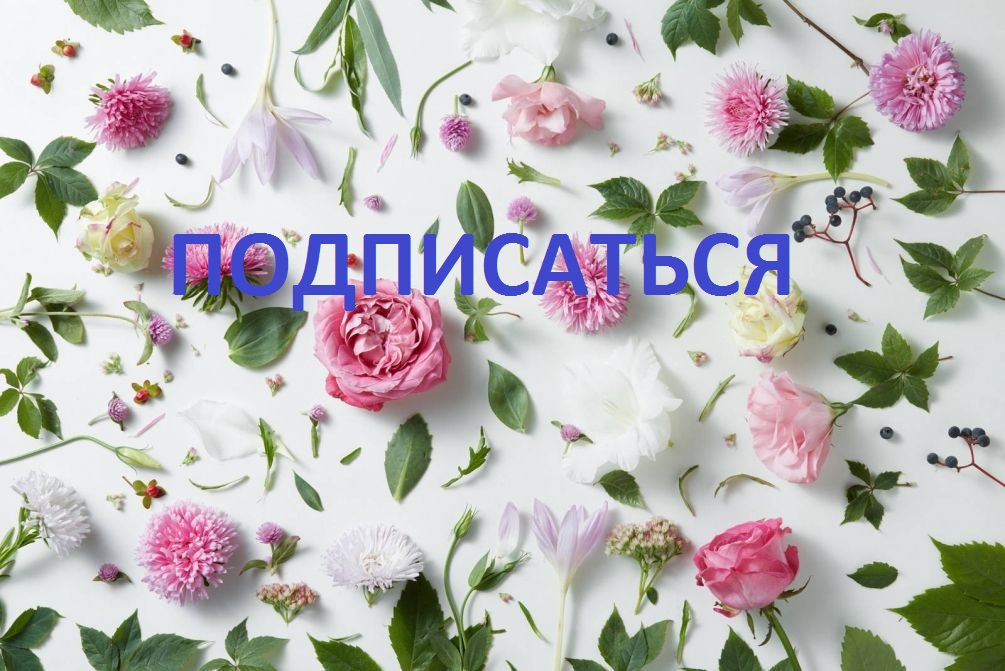 http://info.posidpo.ru/