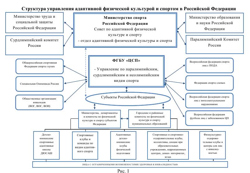 Структура управления адаптивной физической культурой и спортом в Российской Федерации