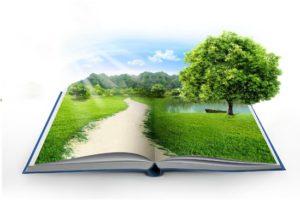Областной Слет учителей-экологии